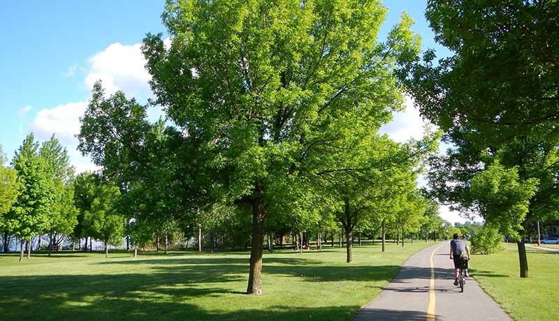 Parc de la Promenade-Bellerive
